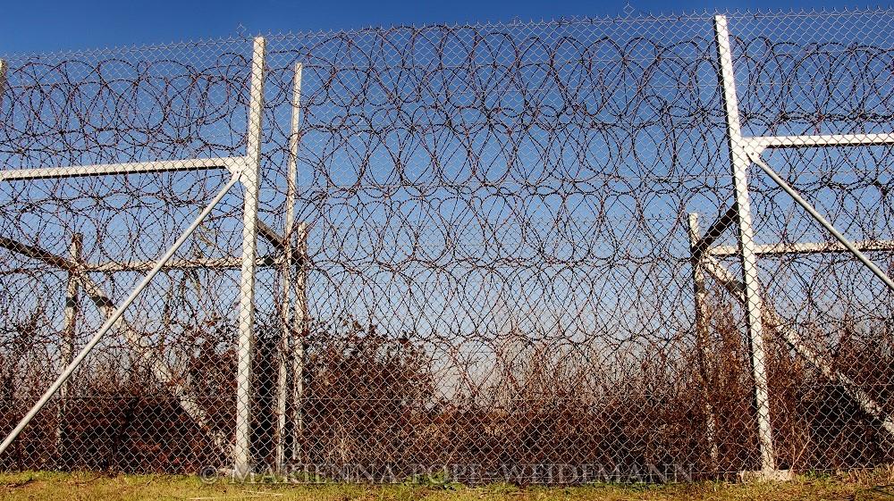 Evros Fence blog
