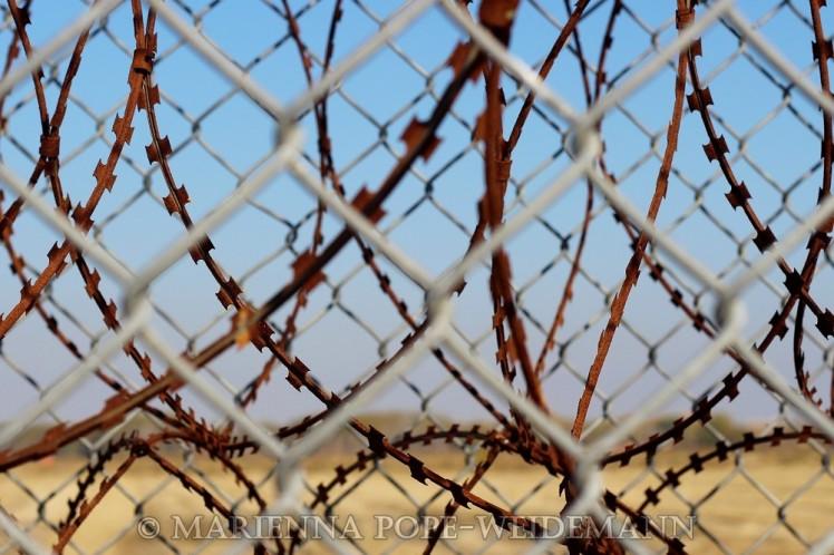 Evros fence closeup blog
